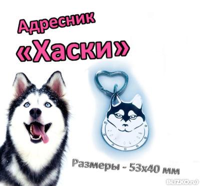 Адресник «Хаски» в Екатеринбурге. Цена товара 350 руб. шт. 7a10e5877e5eb